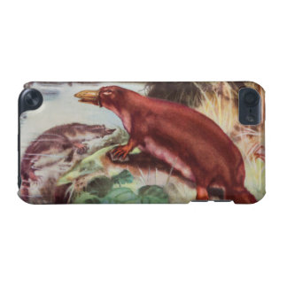 Vintage Platypus Illustration, Animal Drawing iPod Touch (5th Generation) Covers