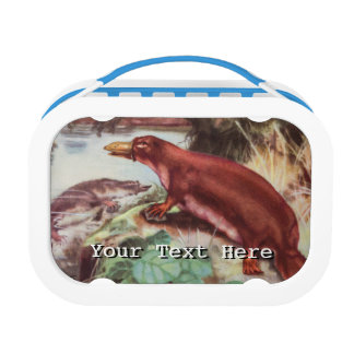 Vintage Platypus Illustration, Animal Drawing Lunch Box