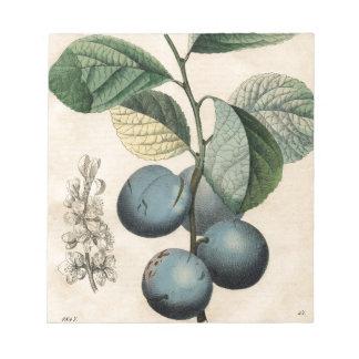 Vintage Plum Botanical Print iPhone 8 Cases Notepad