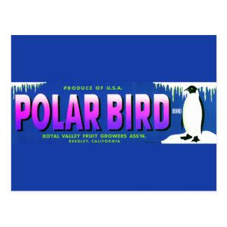 Vintage Polar Bird Fruit Label Postcard