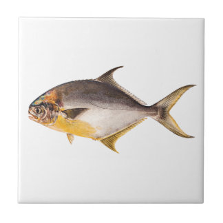 Vintage Pompano Fish - Game Fishes Template Blank Tile