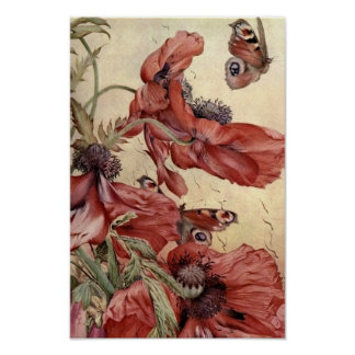 Vintage Poppies and Butterflies Poster