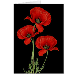 Vintage Poppies Botanical Print Card