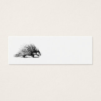 Vintage Porcupine Illustration - 1800's Porcupines Mini Business Card