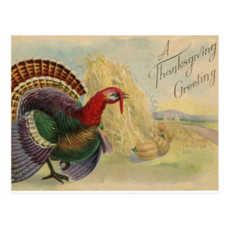 Vintage Postcard - A Thanksgiving Greeting