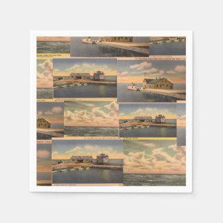 "Vintage Postcards ""Kelley's Island""  Paper Napkins"