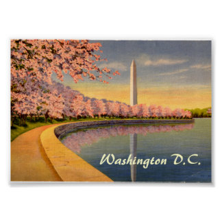 Vintage Poster, Washington DC Poster