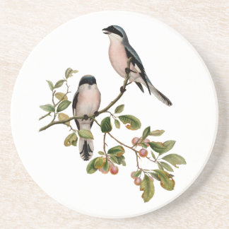 Vintage Pretty Birds on a Branch Coaster