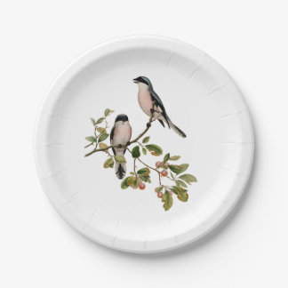 Vintage Pretty Birds on a Branch Paper Plate