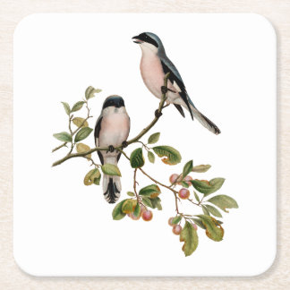 Vintage Pretty Birds on a Branch Square Paper Coaster