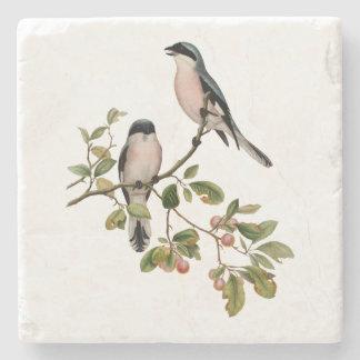 Vintage Pretty Birds on a Branch Stone Coaster