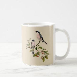 Vintage Pretty Birds on Beige Coffee Mug