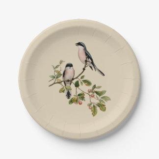 Vintage Pretty Birds on Beige Paper Plate