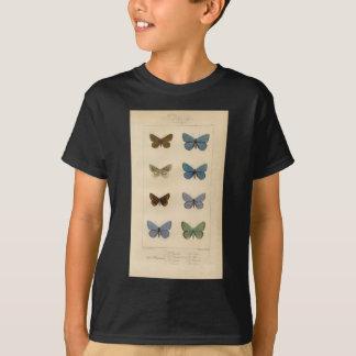 Vintage Print - Polyommatus - Moths & Butterflies T-Shirt