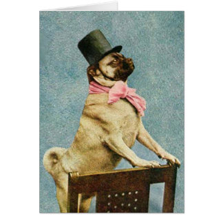 Vintage Pug Dog Stereoview Card