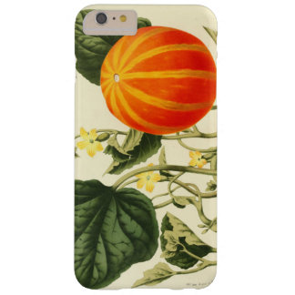 Vintage Pumpkin Botanical Print iPhone 7 Cases