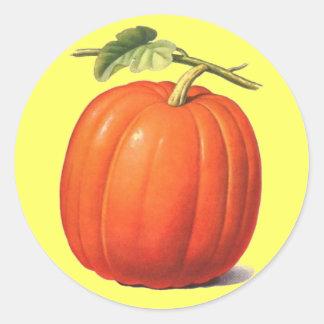 Vintage Pumpkin Classic Round Sticker