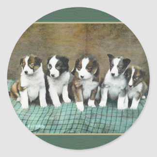VINTAGE PUPPIES STICKER, Raphael Tuck 1909 Classic Round Sticker