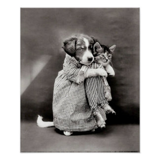 Vintage Puppy and Kitten Poster