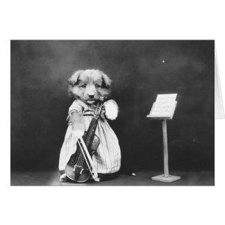Vintage Puppy Violinist, Card