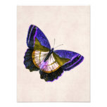 Vintage Purple and Gold Butterfly Illustration Photo Art