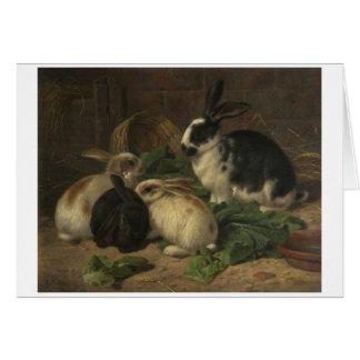 Vintage - Rabbits Eating Lettuce, Card