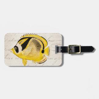 Vintage Raccoon Butterfly Fish - Antique Hawaiian Bag Tag