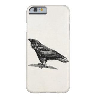 Vintage Raven Crow Blackbird Bird Illustration Barely There iPhone 6 Case