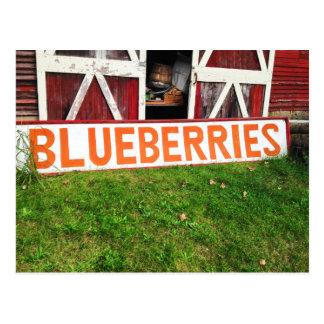 Vintage Red Barn Doors Antique Blueberries Sign Postcard