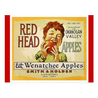 Vintage Red Head Brand Washington Apples Postcards