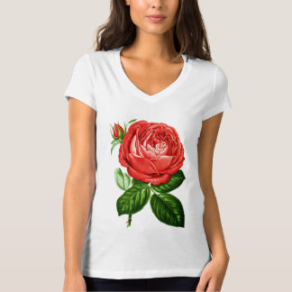 Vintage Red Hybrid Perpetual, Paul Neyron Rose T-Shirt