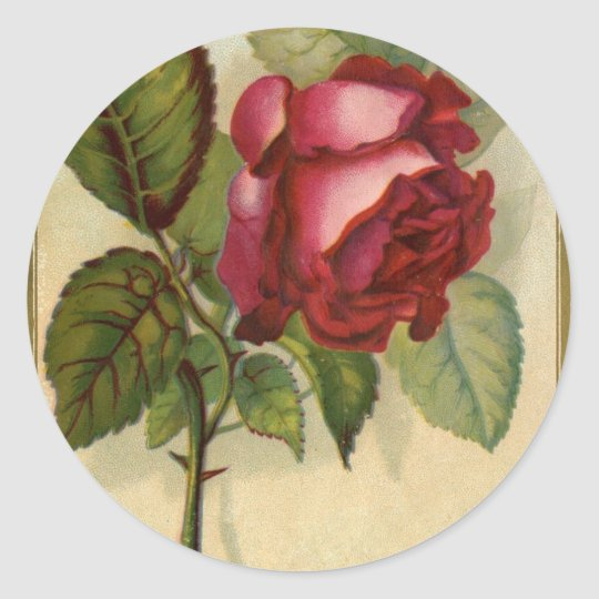 Vintage Red Rose Classic Round Sticker