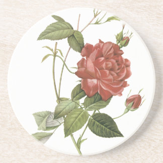Vintage Red Rose Drink Coaster