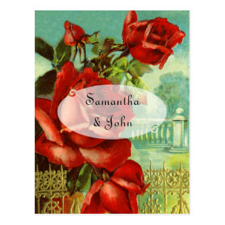 Vintage Red Rose Postcard