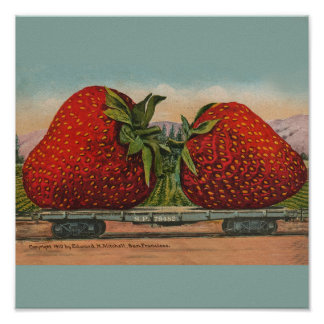 Vintage Red Strawberries Fresh Fruit Poster