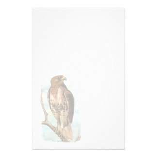 Vintage Red Tailed Hawk Stationery