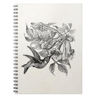 Vintage Red Throated Hummingbird Bird Template Notebook