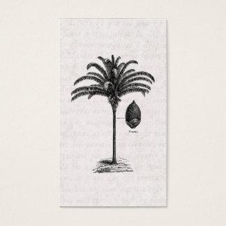Vintage Retro Brazilian Palm Tree Template Palms Business Card