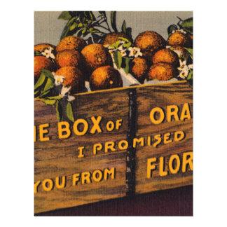 Vintage Retro Florida Oranges Letterhead