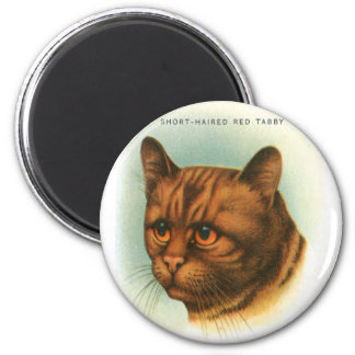 Vintage Retro Kitsch Cat Short Haired Red Tabby 2 Inch Round Magnet