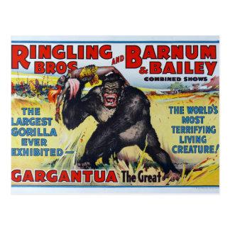 Vintage Ringling Bros Postcard