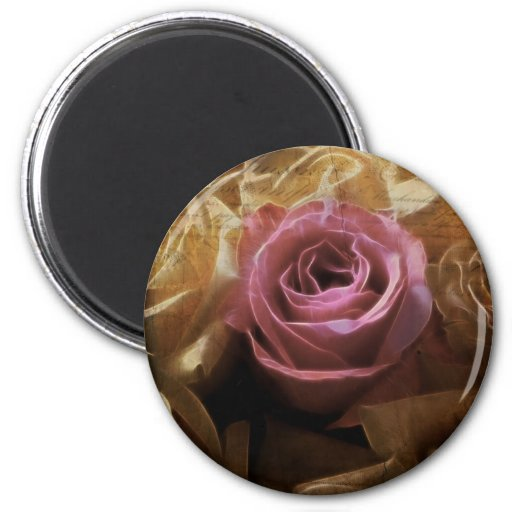Vintage Romantic One of a Kind Love, A Single Rose Magnets