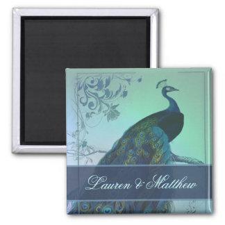 Vintage romantic peacock design square magnet