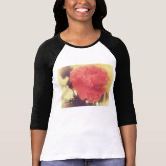 vintage rose raglan shirt ladies