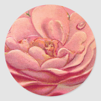 Vintage Rose White Background Classic Round Sticker