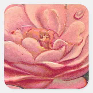 Vintage Rose White Background Square Sticker