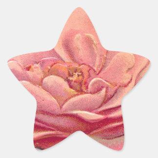 Vintage Rose White Background Star Sticker