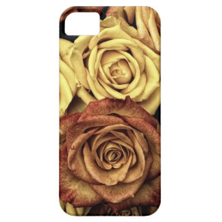 vintage roses case for the iPhone 5