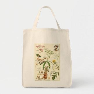 Vintage sage illustration groceries tote bag
