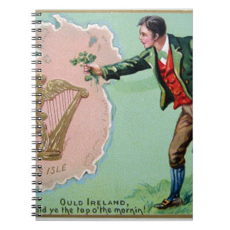 Vintage Saint Patrick's day erin's isle poster Notebook